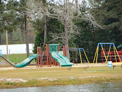 Playground Equipment. (dccradio) Tags: lumberton nc northcarolina robesoncounty outdoor outdoors outside lutherbrittpark citypark park sky cloudy overcast spring springtime tree trees foliage greenery treelimb treelimbs treebranch treebranches branch branches playground playgroundequipment swing swings swingset climb slide ladder playarea grass lawn water pond lake bodyofwater shore slides canon powershot elph 520hs geese goose canadagoose canadageese bird waterfowl animal bench parkbench