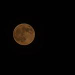 Blood Moon HDR-100 thumbnail