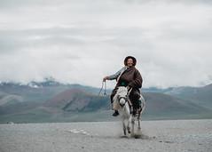 Tibetan Horseman (little_stephy0925) Tags: fujifilm fuji fujifilmxt2 fujixt2 xt2 fujinonxf50140mm xf50140mm xf50140 classicchrome mirrorlesscamera tibet journeytotibet namtso tibetan horseman horseriding horse actionphoto cloudyday explorechina beautifulchina