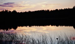 IMG_1767 (www.ilkkajukarainen.fi) Tags: järvi lake kuusamo water vesi sun set auringon lasku summer kesä 2018 finland finlande travel traveling happy life suomi eu europa scandinavia