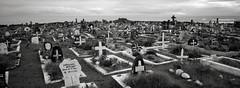 Cemetery, Easter Island (austin granger) Tags: cemetery easterisland rapanui hangroa graves sea death memorial memory time film xpan