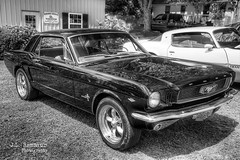 1966 Ford Mustang B&W - Granville, TN Heritage Days Car Show (J.L. Ramsaur Photography) Tags: ford fordmotorcompany fordmustang fomoco mustang 1966 1966fordmustang 1966mustang americanracingtorqthrustrims americanracingrims blackmustang torqthrustrims granvilleheritagedayscarshow jlrphotography nikond7200 nikon d7200 photography photo granvilletn middletennessee jacksoncounty tennessee 2018 engineerswithcameras cumberlandplateau photographyforgod thesouth southernphotography screamofthephotographer ibeauty jlramsaurphotography photograph pic granville tennesseephotographer granvilletennessee tennesseehdr hdr worldhdr hdraddicted bracketed photomatix hdrphotomatix hdrvillage hdrworlds hdrimaging hdrrighthererightnow bw blackwhite blackandwhite nik niksilverefexpro2 silverefex nikcollection monochrome colorless retrocar antiquecar classiccar retro classic antique automobile car vintage vintagecar