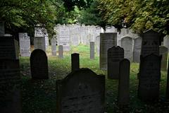 Middelburg (Walensingel) (Omroep Zeeland) Tags: begraafplaats joodsebegraafplaats asjkenazischejoden walensingel middelburg