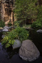 Sedona Rocks (jackielynn831) Tags: nikon d7200 tokina 1120 landscape nature rocks water sedona arizona
