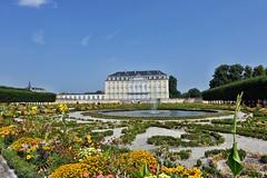 Blumenpracht im Schlosspark (mama knipst!) Tags: schlosspark schlossaugustusburg brühl sommer juli