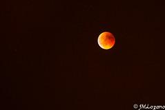 luna de sangre (EXPLORE) (josmanmelilla) Tags: luna nocturna noche eclipse cielo pwmelilla flickphotowalk pwdmelilla pwdemelilla melilla españa