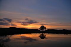 IMG_3100 (geraldtourniaire) Tags: natur nature landschaft franken ef eos6d 24105l sonnenaufgang 6d