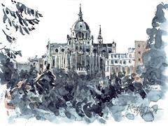 La Almudena desde las Vistillas (P.Barahona) Tags: monumento catedral jardines arquitectura urbano ciudad árboles vegetación