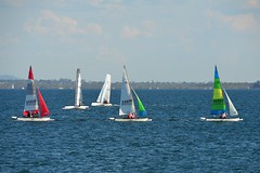 800_4761 (Lox Pix) Tags: queensland qld australia catamaran trimaran hyc humpybongyachtclub winterbash loxpix foilingcatamaran foiling bramblebay sailing race regatta woodypoint boat