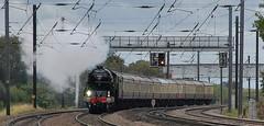 Tees-Tyne Express - Edited version (paul_braybrook) Tags: 60163 classa1 pacific tornado lner steamlocomotive copmanthorpe york northyorkshire railtour railway trains eastcoastmainline