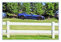 A Sporty Corvette Beyond the Fenceline (sjb4photos) Tags: 2018stjohnsconcours corvette fence fencefriday hff