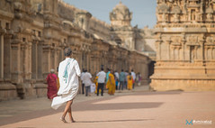 [India] Southern India - July 2018-24 (#vmivelaz) Tags: india inde asia asie voyage travel canon 1dx vinz wwwvincentmivelazcom vmivelaz vincent mivelaz photography co