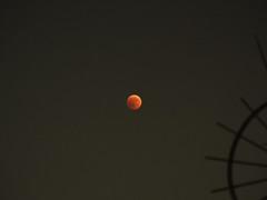 P7270005 18x24 (M64RM) Tags: eclissi eclipse mooneclipse