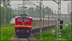 BZA WAP-4 (Abhishek Jog) Tags: dashing bza wap4 25007 charging 22416 ndlsvskp ac ap express greets et 22629 hauled 11464 jabalpur somnath lush green misrod mso from hbj vijayawada jbpsmnh itarsi bpl jn junction bhopal bhopaljn