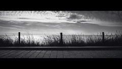 [ Barbed ] (Visual Flows) Tags: visualflows photography cinematography widescreen blackandwhite bw visual flows wes anderson bloemendaal aan zee beach sunset clouds fench barbed wire fluffy