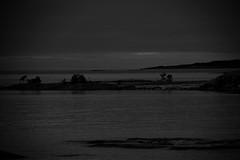 Utö-0001 (Christophe La Rocca) Tags: 2018 noiretblanc pointillisme nature outdoor sweden travel paysage dark suède sombre sauvage black noir bnw