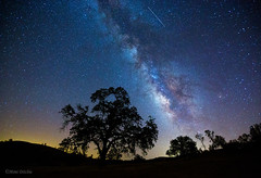 Perseid Meteor Shower 2015 (Mimi Ditchie) Tags: milkyway astrophotography stars perseid perseidmeteorshower 2015 august2015 night starrynight trees shellcreekroad silhouettes meteors getty gettyimages mimiditchie mimiditchiephotography