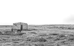 Middle (Isai Hernandez) Tags: blackandwhite middle white blancoynegro photography photoshooting naturephotography composition places