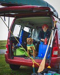 After a tough morning on the water it's nice to get back to the car for a cup of tea! • • • • • #campingwithdogs #hikingwithdogs #adventuredog #dogsthathike #dogsonadventures #backcountrypaws #adventurewithdogs #hikingdogsofinstagram #adventureswithdogs # (watson_the_adventure_dog) Tags: after tough morning water its nice get back car for cup tea • campingwithdogs hikingwithdogs adventuredog dogsthathike dogsonadventures backcountrypaws adventurewithdogs hikingdogsofinstagram adventureswithdogs heelergram excellentdogs animaladdicts dogsofinstagram ireland instaireland discoverireland loveireland irelandgram optoutside earthfocus stayandwander dogoftheday theoutbound discoverglobe instagoodmyphoto doglover bestwoof dogsofig dogsofinstaworld muttbasil