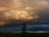 ¡Oh, cielos! 161. Atardece al Este. (bego vega) Tags: ¡ohcielos cielos sky nubes clouds atlantica atlas cedro cedrus árbol tree conífera madrid vf terraza bego vega bv veguita begovega atardecer sunset