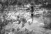 shallow bit of river (gorbot.) Tags: leicam8 carlzeiss35mmbiogonf2zm mmount rangefinder blackandwhite monochrome vscofilm sicily summer cavagrandedelcassibile