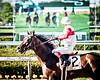 Inspector Lynley (EASY GOER) Tags: horse racing equines thoroughbreds lensbaby edge80 belmont park equine thoroughbred