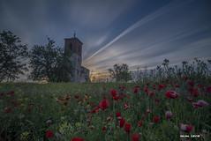 Wake up the poppies - Despiertan las amapolas. (Mm_lara) Tags: landscape longexposure largaexposición paisaje places lugares