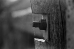 Nut and Bolt (Semjaja) Tags: blackandwhite blackandwhitephotography blackandwhitefilm nikonf90x nikon nikkor afnikkor28105mmd kodak kodaktmax100 tmax tmax100 film 35mm 35mmcamera 35mmfilm filmlives filmsnotdead filmphotography filmcamera ishootfilm shootfilm ruraldecay southafrica