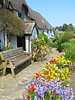 The Cott Inn! ('cosmicgirl1960' NEW CANON CAMERA) Tags: flowers worldflowers nature parks gardens colourful spring devon yabbadabbadoo