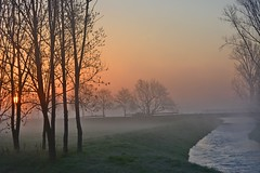Sunrise at the river (Tobi_2008) Tags: sonnenaufgang sunrise flus river bäume trees himmel sky grosenhain sachsen saxony deutschland germany allemagne germania