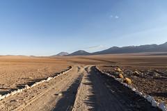 Desierto Siloli (elparison) Tags: desert desierto bolivia potosi