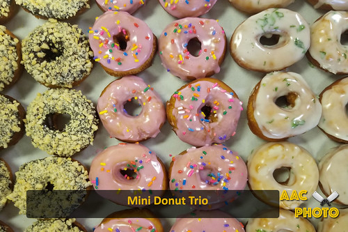 """Mini Donut Trio • <a style=""""font-size:0.8em;"""" href=""""http://www.flickr.com/photos/159796538@N03/28004814698/"""" target=""""_blank"""">View on Flickr</a>"""