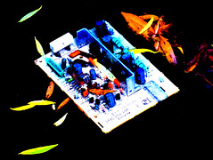 Recycling Old Technology (Steve Taylor (Photography)) Tags: digitalart black blue contrast orange white yellow red newzealand nz southisland canterbury christchurch city cbd capacitor ccb electronics diode circuitboard inductor integratedcircuit resistor transistor leaves