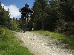 Going Light (Gee & Kay Webb) Tags: mtb mountainbike bike bicycle cycling outdoors riding trails trees coedllandegla wales