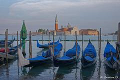 Gondoles à Venise - Italie (Goodson73) Tags: didier bonfils goodson73 dbonfils vogalonga 2018 venise murano burano mer italie italia venezia gondole reflets