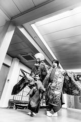 お稽古 - 01 - 16 (Stéphane Barbery) Tags: hayashi koume soichiro children enfants filles girls japan japon kyoto lesson leçons noh nô okeiko お稽古 京都 宗一郎 小梅 日本 林 能楽