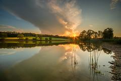 romantic atmosphere during sunset (hjuengst) Tags: bavaria bayern sonnenuntergang sunset bergerlacke steinhöring ebersberg lake see trees bäume spiegelung reflection reflektionen clouds wolken