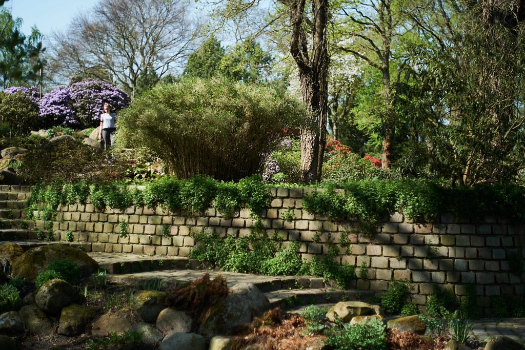 Schön Bremen   Botanischer Garten (.rog3r1) Tags: Bremen Germany Botanischer  Garten Garden