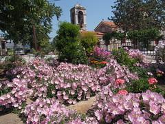 Η εκκλησία του Αγίου Σπυρίδωνα μέσα από τον κήπο της κ. Σταθούλας. (Giannis Giannakitsas) Tags: greece grece griechenland viotia βοιωτια ορχομενοσ αγιοσ σπυριδωνασ βρανεζι