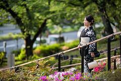 Kimono Afternoon (Jon Siegel) Tags: nikon nikkor d810 80200mm 80200mmf28 28 woman beautiful kimono japan japanese tokyo afternoon city urban fashion forest trees people