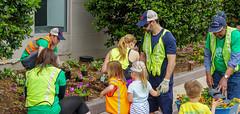 2018.05.06 Vermont Avenue, NW Garden - Work Party, Washington, DC USA 01789