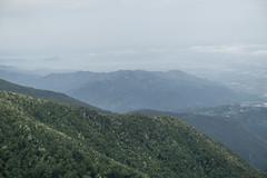 Vista dal sentiero 3 nei pressi del Monte Rocca (Luca Rodriguez) Tags: capriglia gabberi lucarodriguez apuane alpiapuane montagna mountain trekking hiking toscana tuscany versilia santannadistazzema