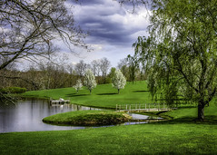 Small pond (jsleighton) Tags: small pond boat dock lawn grass trees sky landscape