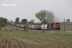 IMG_6092 (eslade4) Tags: bnsf4535 c449w cn5486 sd60 bnsf735 cn canadiannationalrailway raymond