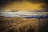 Scotland Campervan -38 (Defi90) Tags: landscape march scotland skye skócia uk isleofskye oldmanofstorr travel tájkép utazás