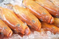 (LaTur) Tags: fish seafood foodie foodporn dcist