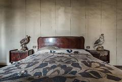 Ladyhawke (maxmene70) Tags: urbex urban room hawk fly lady bed house dark shadow exploration decay lost canon wall art