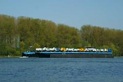 MS JOLINE (Lutz Blohm) Tags: msjoline speyer roroautotransporter rhein gütermotorschiff binnenschiffe binnenschifffahrt mercedesbenzlkw fluskilometer399 rheinschifffahrt sonyalpha7aiii