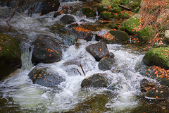 Water Rapid in Autumn (PhBos) Tags: water rapid autumn creek flow landscape mountains stream watercourse wild river
