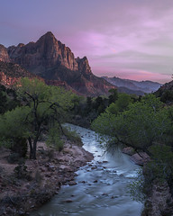 The Watchman (Bereno DMD) Tags: mountain sunset blue bluehour pink sky color river virginriver virgin zion utah spring trees tree leading leadingline flow wild wilderness nature landscape land geology glow sigma 14 sigmaart art sigmaart14 pan panoramic panorama